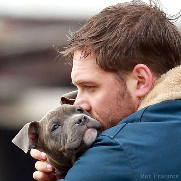 "Actor Tom Hardy on the set of ""Animal Rescue"""